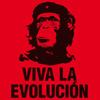 sov0k: (Evolucion!)