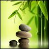 fo_tiniya: (баланс)