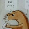 hobot_bobot: (decaf)