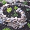 kiya: (garden, landwight)
