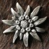 weiss_edel: (silver_edelweiss)