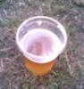 the_bvjdbx: (пиво и трава)