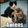 i_phoenix: (Awiens)