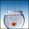i_phoenix: We've all had days like this... (fishbowl)