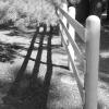 doc_paradise: (fence)