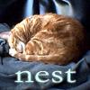 ladymondegreen: (Nesting)