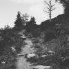 blessyourheart: (Highlands)