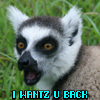 leaping_lemurs: (I Wantz U)