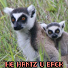 leaping_lemurs: (We Wantz)