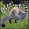 leaping_lemurs: (Glee by the_reverand)