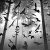 animaliamine: (Bat Swarm by jackshoegazer)