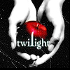 wildcard_47: (Twilight - book cover)