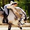 areumdaunview: (equine // the right reward)