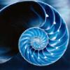 pensieve: (blue)