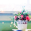 grassangel: a teacup filled with flowers (a teacup filled with flowers, cups, cheery, hello, thank you)