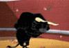 murakozi: (bull bow)