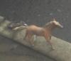 dirkthejirk: (horsey)