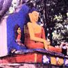 gategrrl: (Swayambunath Buddha)