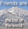 cactuswatcher: (Friends)