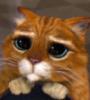 miggerrtis: (кот в сапогах)