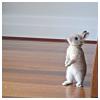 missdiane: (Bunny Standing)