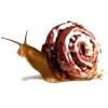 armyofsnails: (food snail)