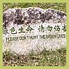 hanabushi: (gardening, green, planting)