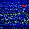 sue866: (am_I_blue)