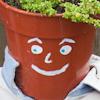 ewx: (flowerpot)