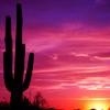 emo_episkey: (Desert Sunset)