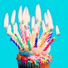 pretentious_kneecap: (birthday cupcake)