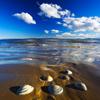 chalcedony: (beachy keen)
