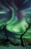 my_thestral: (aurora borealis)