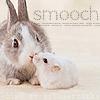 wolffe: (bunny smooch)