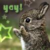 dragoon811: (yay bunny)