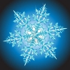 tjs_whatnot: (Snowflake Challenge)