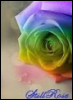 stillrose: (rainbow)