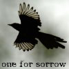 the_sheryl: (One for sorrow)