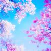 idunn: (sky)