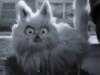 surovmag: (Cat)