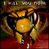 sarahfish: (angry (giant hornet))