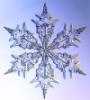 rayvyn2k: A snowflake (snowflake)