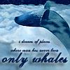 rosa_cotton: (only whales)