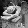 delphipsmith: (weeping angel)