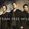 moonshayde: (Team Free WIll)