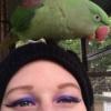 valkyriestears: (brain parrot)