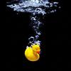 annieeats: (duck)