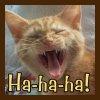 evaine_lj: (Ha-ha-ha Kitten)