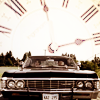 chomsky_rabbit: (Impala)