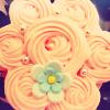 thefairestofthemall: (pink cupcake)